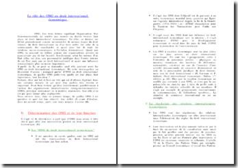 Le rôle des ONG en droit international économique