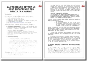 La procédure devant la Cour Européenne des Droits de l'Homme (CEDH)