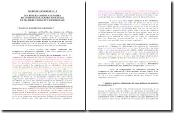 Les règles communautaires de compétence juridictionnelle en matière civile et commerciale