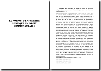 La notion d'entreprise publique en Droit Communautaire