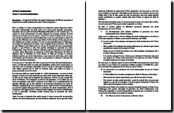 L'apport de la Charte des droits fondamentaux de l'Union européenne à la protection des droits fondamentaux dans l