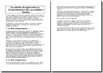 Droit d'expression et d'amendement des Assemblées Locales