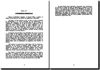 Conseil d'Etat, 30 mai 1930, Chambre syndicale du commerce en détail de Nevers