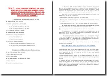 Les principes généraux du droit (PGD) détiennent une place originale dans la hiérarchie des normes