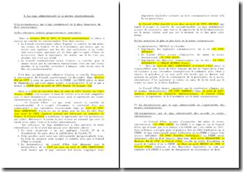 Le juge administratif et la norme internationale