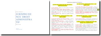 Jurisprudences administratives à connaître en L2 de droit