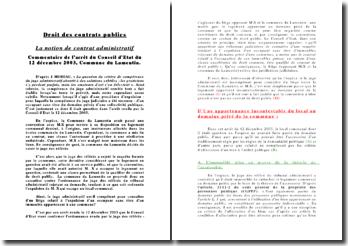 CE du 12 décembre 2003, commune du Lamentin