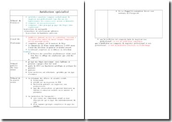 Tableau détaillant les juridictions civiles spécialisées