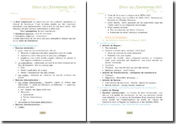 Introduction au droit de l'entreprise et Actes de Commerce