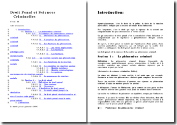 Droit pénal général (version 2)