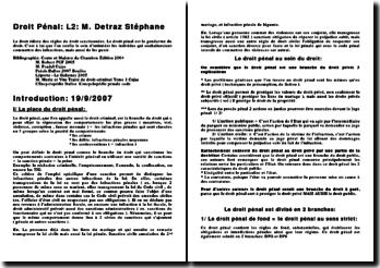 Droit Pénal Général (version 4)