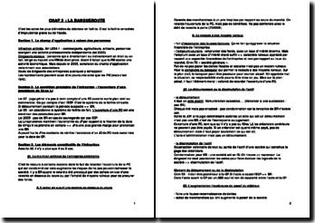 La banqueroute (version 2)