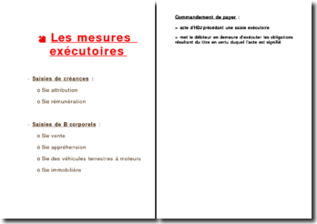 Les mesures exécutoires (version 2)