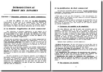 Droit des affaires (version 2)