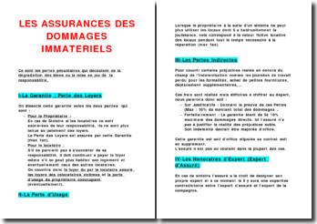 Les assurances des dommages immatériels
