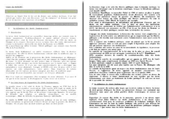 Théorie générale des droits fondamentaux 2007