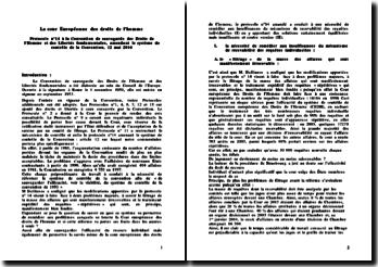 Le Protocole n 14 à la Convention de sauvegarde des Droits de l'Homme et des Libertés fondamentales