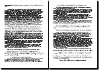 Les droits économiques et sociaux du préambule de la Constitution de 1946, des droits fondamentaux?