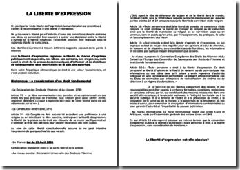La liberté d'expression - Protection et exceptions au principe