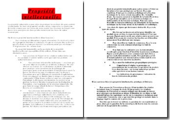 Droit de Propriété Intellectuelle (version 3)