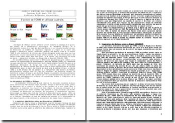 L'action de l'ONU en Afrique australe