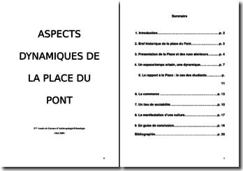 La dynamique de la 'Place du Pont' à Lyon