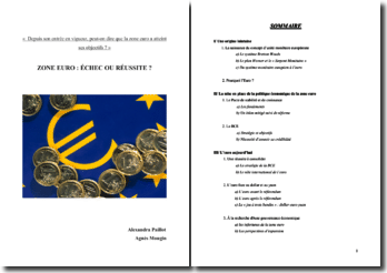 Depuis son entrée en vigueur, peut-on dire que la zone euro a atteint ses objectifs ?