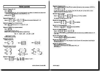 Calculs matriciels