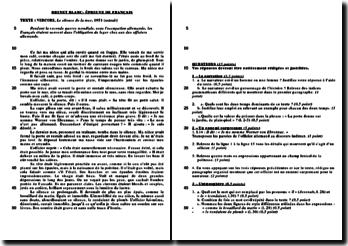 Épreuve de brevet blanc corrigée sur le texte narratif - un extrait du silence de la mer de Vercors
