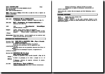 Modèle de CV (graphisme 4)