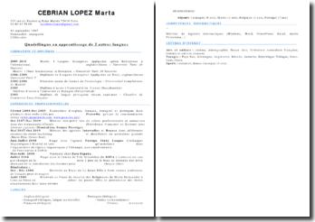 CV type français