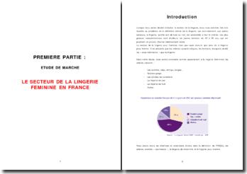 Le secteur de la lingerie féminine en France