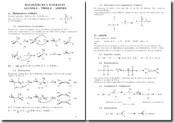 Halogénures d'alkyles - Alcools- Thiols - Amines